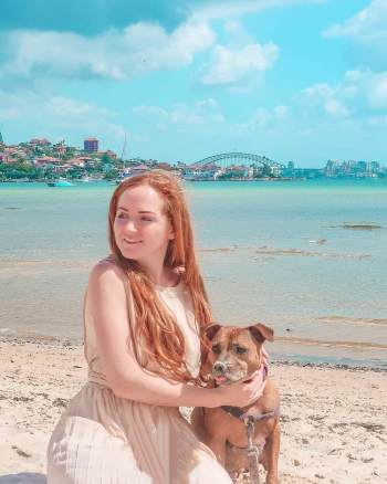 rose bay dog beach Sydney