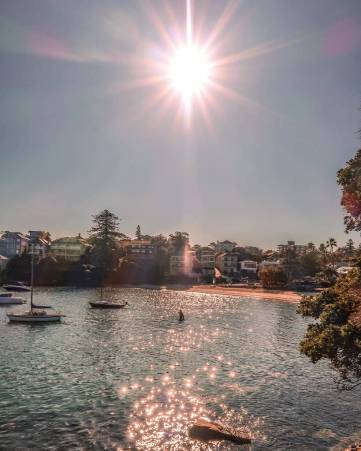 little manly cove beach Sydney