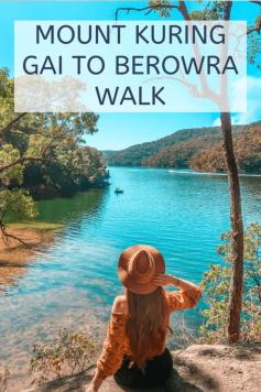mount kuring gai to berowra walk