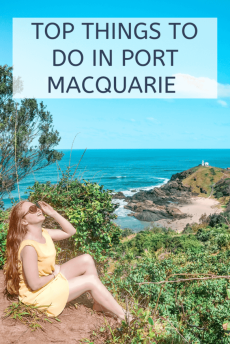 top things to do in port Macquarie