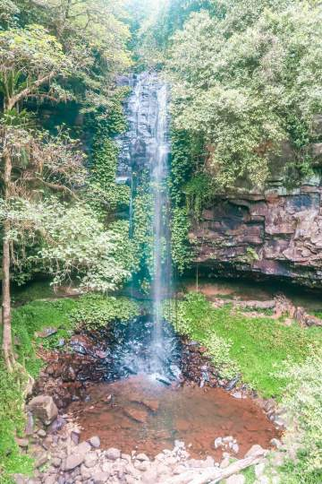 crystal shower falls dorrigo national park