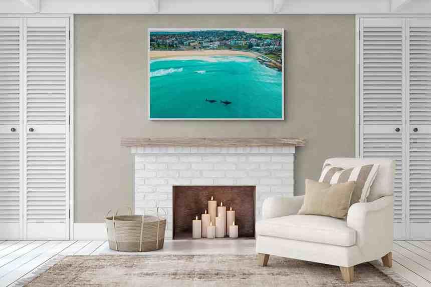 Bondi Beach whales Sydney