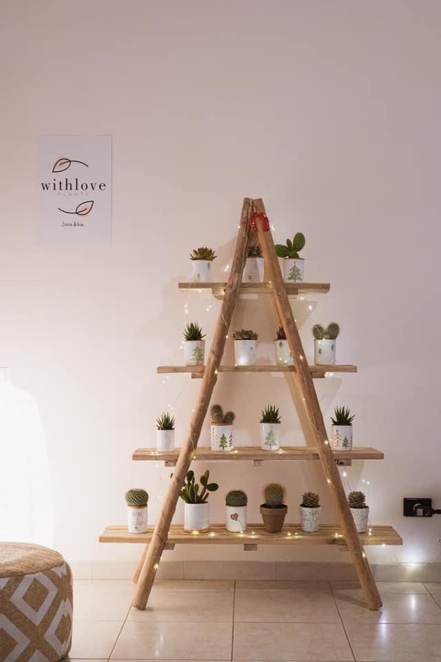 piante idea regalo sostenibile imprenditoria e territorio