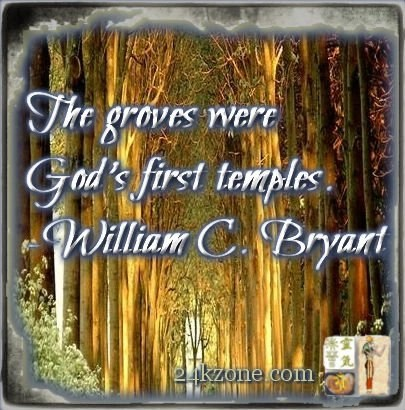 The groves were God's first temples