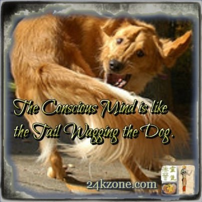 The conscious mind is like the tail wagging the dog