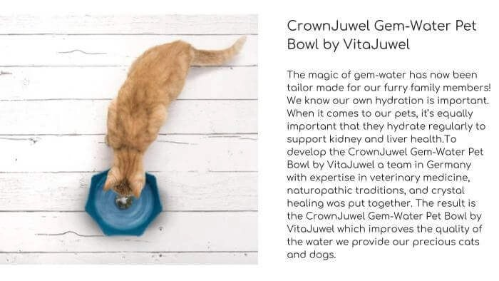 GEM WATER VITAJUWEL Gem-Water Pet Bowl
