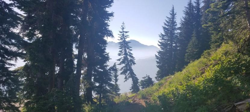 J 89 – 28 juillet. Grider Creek Campground (Mile 1650)