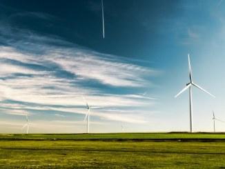 sommer danmark mark vindmølle natur