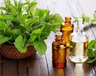 Mentha Oil Rate Today: Mentha Oil breaks down to around 1230, should investors buy?