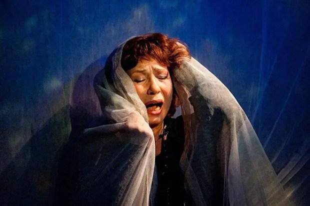 Елена Камбурова в театре