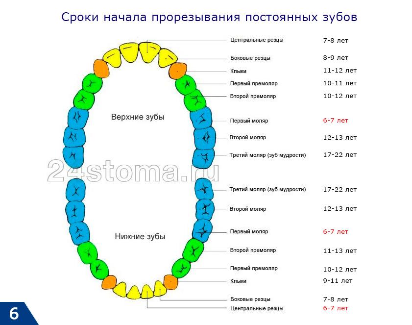Diagrama dentară dentară la copii fără patologie