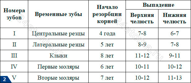 Таблица №1 - сроки выпадения молочных зубов