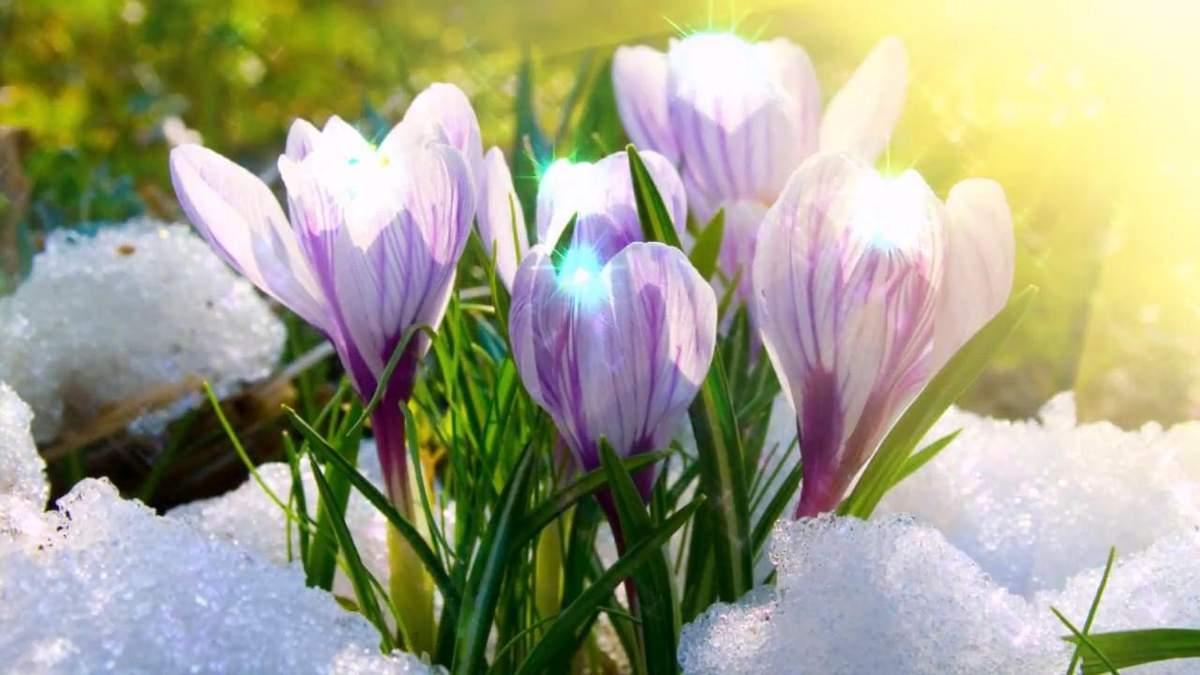 Коли в Україні настане справжня весна: прогноз від ...