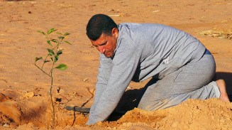 Der sandige Wüstenboden hat einen Vorteil: Zum Graben braucht man keine Schaufel.