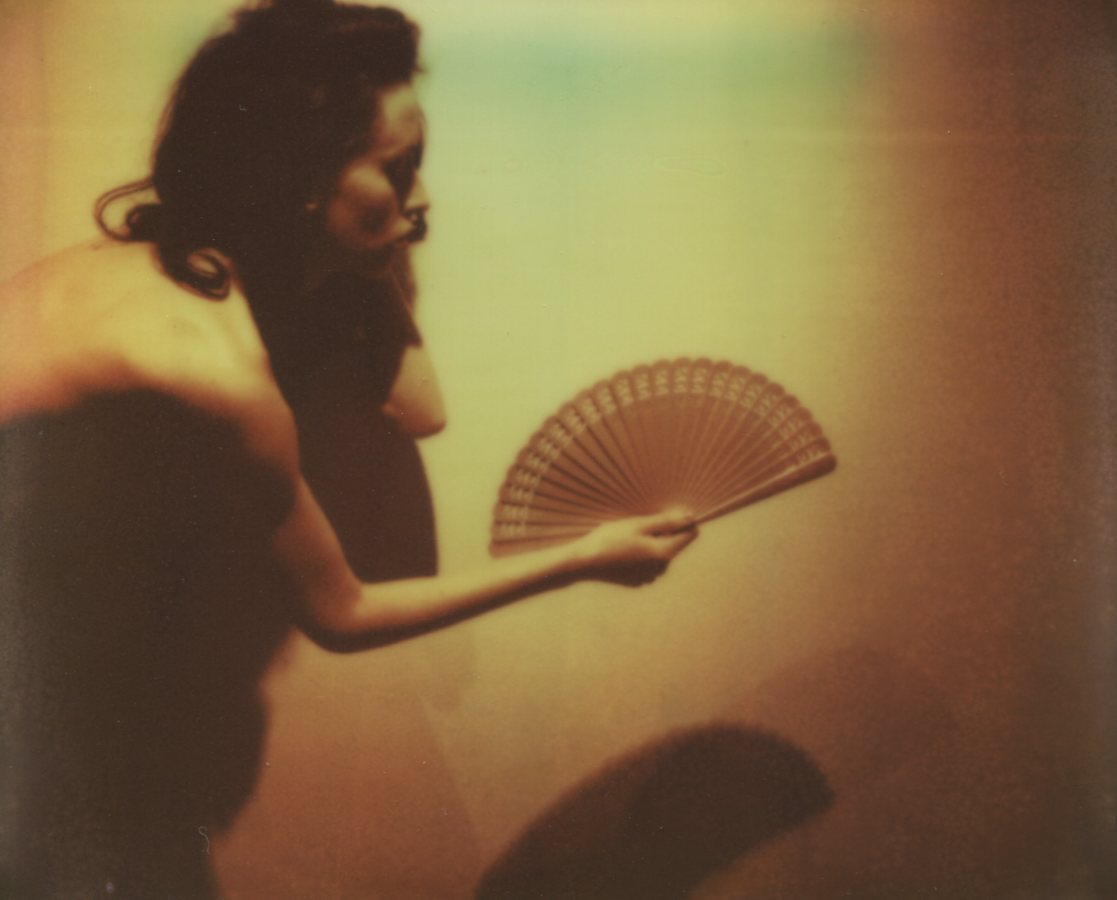 My Fan, Self PortraitThe IMPOSSIBLE Project, PZ680 Cool Film, 2012@ Anna Marcell