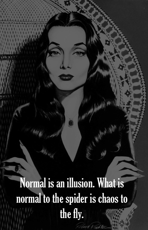 Image result for normal is an illusion