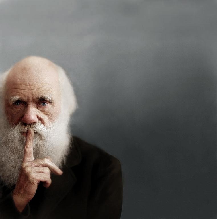 colorized Darwin image