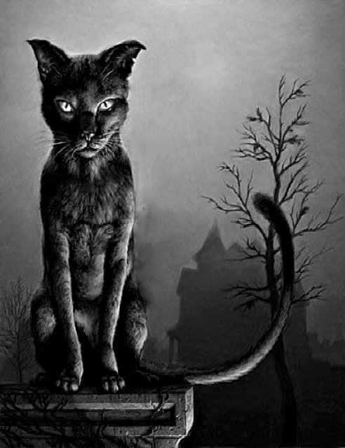 witchinqhour:</p> <p>✩☽Witchinqhour's Edits☾✩lSource</p> <p>KEEP AWAY FROM END HOUSE<br /> OR I'LL SCRATCH YOUR EYES OUT!<br /> THE DEAD GAME HAS BEGUN.