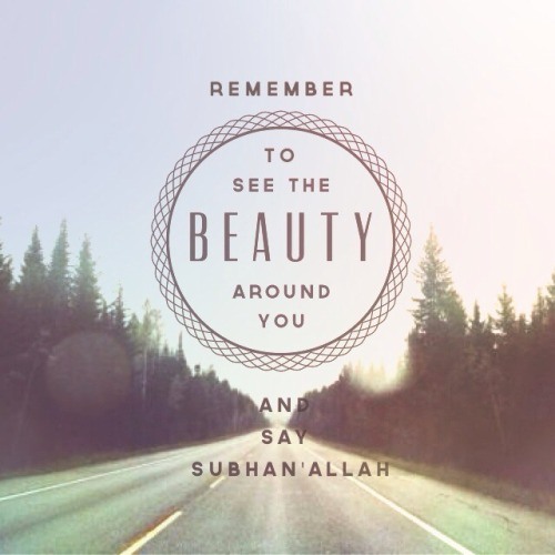 When you see the beauty of the creation made by Allah, glorify Him.www.lionofAllah.com