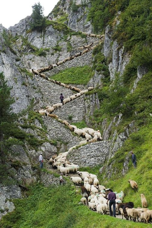 Belalp, İsviçre