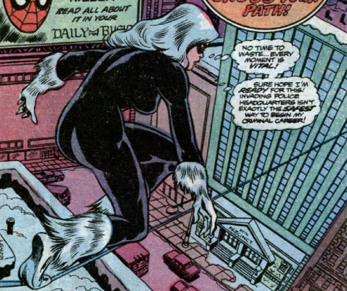 first appearance of black cat