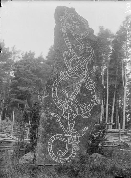 "marsiouxpial:  Rune stone, Näsby Odensala, Uppland, Sweden (via Swedish National Heritage Board) ""Rune stone (U 455) in Näsby Odensala. The inscription says: ""Ingefast had this stone raised in memory of Torkel, his father, and in memory of Gunhild, his mother. They both drowned"". Runsten (U 455) vid Näsby Odensala. Ristningen säger: ""Ingefast lät resa denna sten efter Torkel, sin fader, och efter Gunhild, sin moder. De druknade båda"". Parish (socken): Odensala Province (landskap): Uppland Municipality (kommun): Sigtuna County (län): Stockholm Photograph by: Erik Brate Date: 1909 Format: Glass plate negative"""