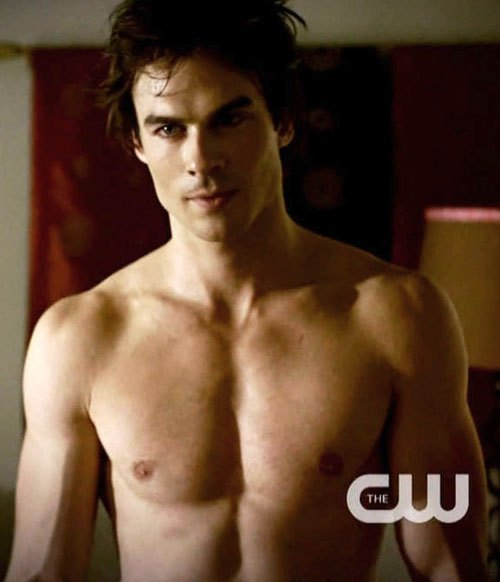 I usually go for the blond vamps, but I make an exception for Damon.