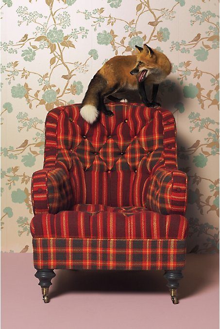 Lunet Chair, Plaid by Anthropologie