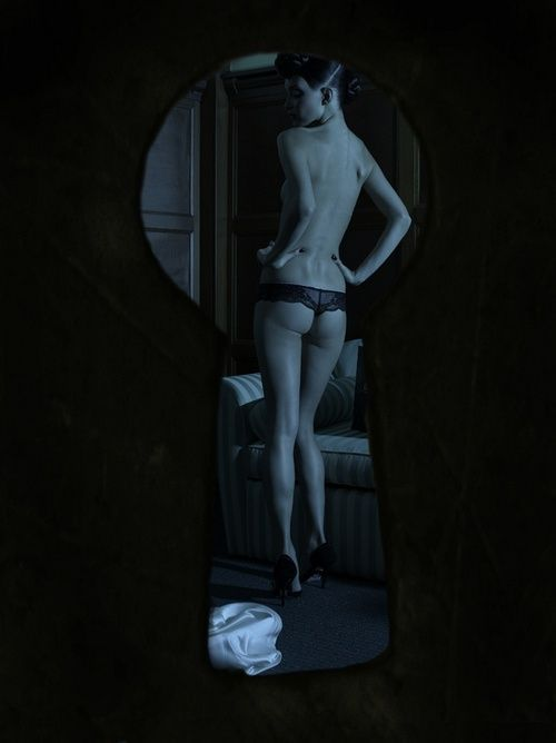 Sexo para parejas - a través de la cerradura