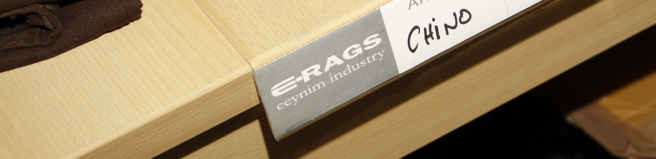 E-RAGS