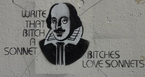 bitches love sonnets
