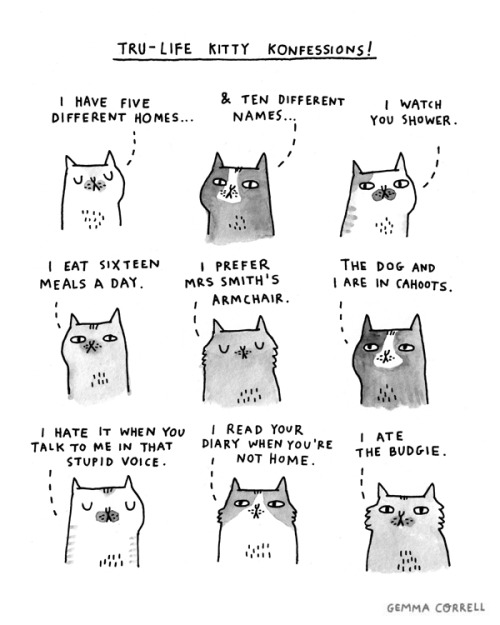 Featured Artist: Gemma Correll (3/6)
