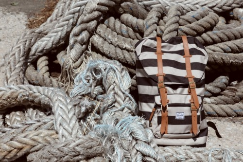 DQM Fall 2012Herschel Supply Lookbookhttp://ow.ly/cJeB3