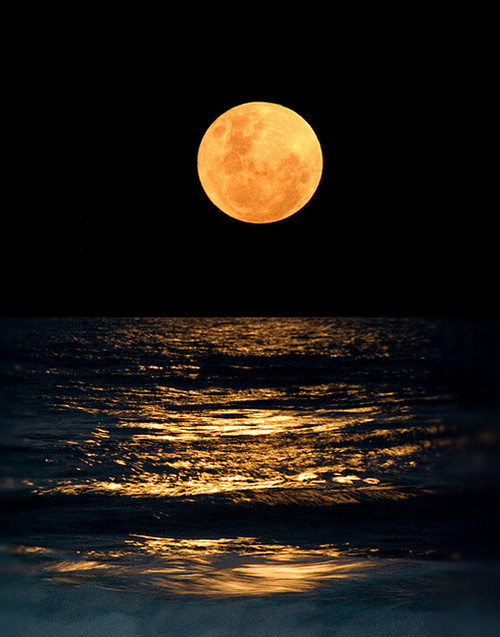 Image result for moon night ocean