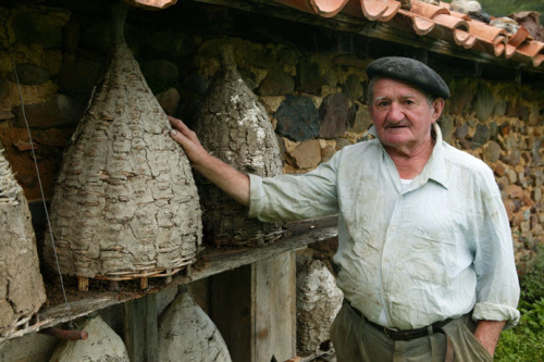 french beekeeper