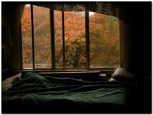 light autumn Window bed sheets medicine-from-rain •