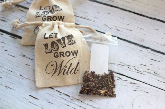 Image result for let the love grow seeds