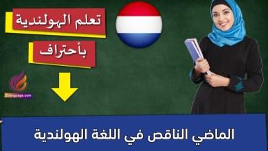 الماضي الناقص في اللغة الهولندية