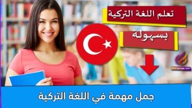 جمل مهمة في اللغة التركية