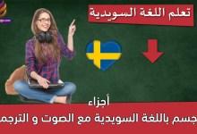 أجزاء الجسم باللغة السويدية مع الصوت و الترجمة