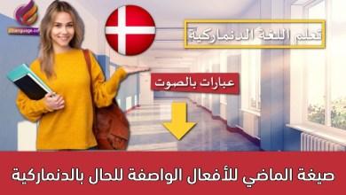 صيغة الماضي للأفعال الواصفة للحال بالدنماركية