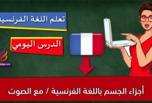 أجزاء الجسم باللغة الفرنسية / مع الصوت