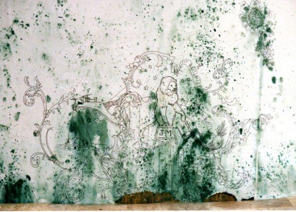 Iris Priest, BLOOM drawings