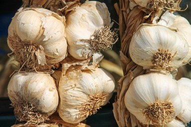 garlic, onions, coronavirus, strengthen immune system