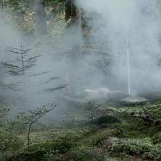 naido appears amid smoke at Jack Rabbits Palace