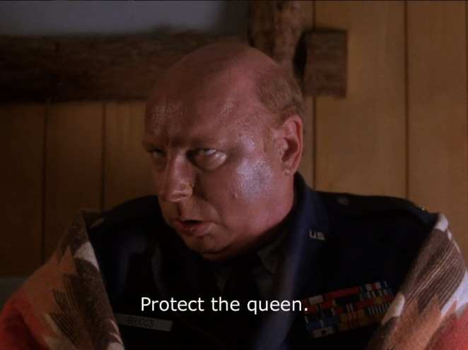 protect-the-queen
