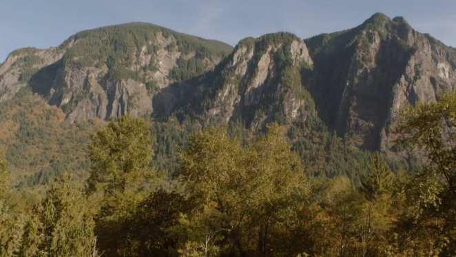 White tail mountain