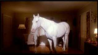 White Horse in the Palmer house