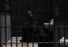 woodsman_jail_twin_peaks