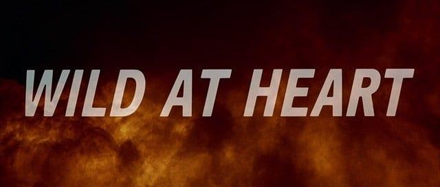 wild-at-heart-hd-movie-title